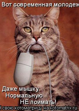 Котоматрица: Вот современная молодеж Даже мышку  Нормальную НЕ поймать!