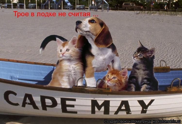 в одной лодке с тобой тесно