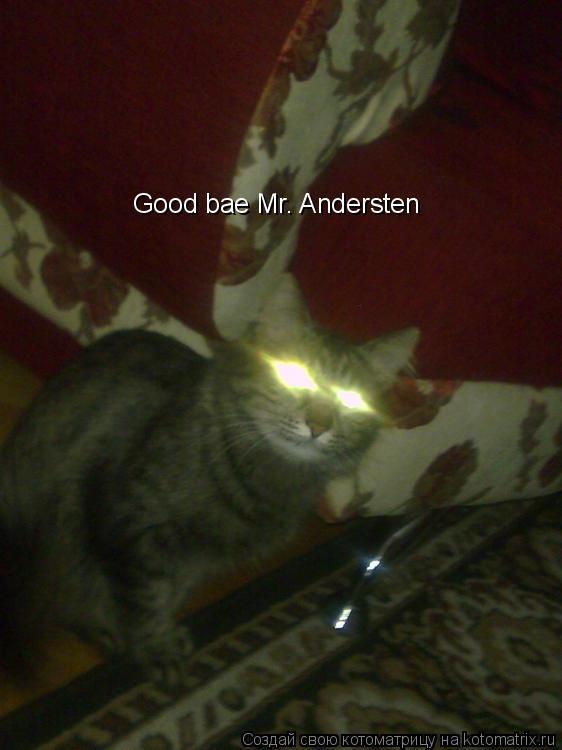 Котоматрица: Good bae Mr. Andersten