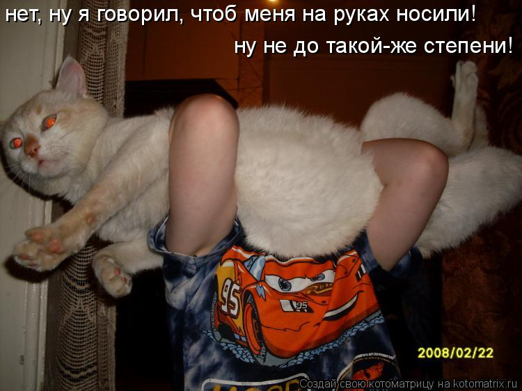Котоматрица: нет, ну я говорил, чтоб меня на руках носили! ну не до такой-же степени!