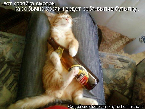 Котоматрица: -вот хозяйка смотри.. как обычно хозяин ведёт себя-выпив бутылку..
