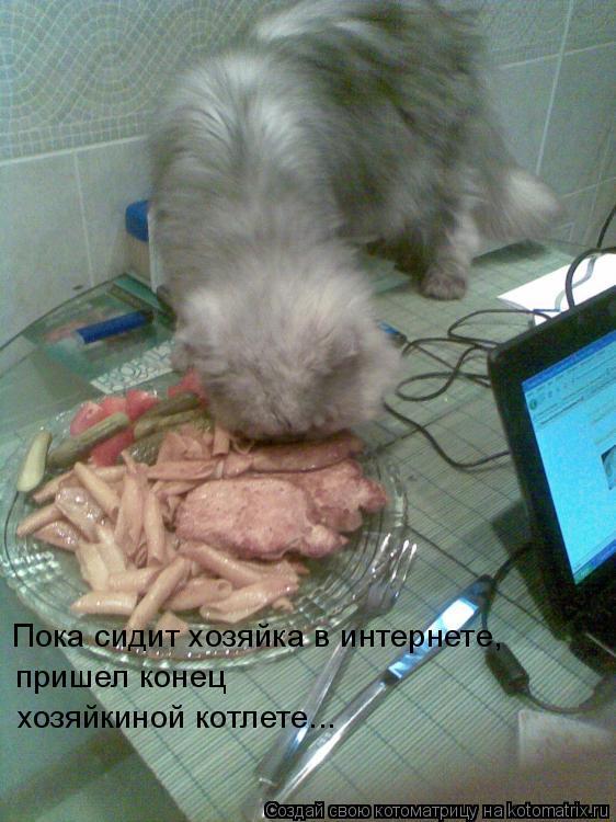Котоматрица: Пока сидит хозяйка в интернете, пришел конец хозяйкиной котлете...