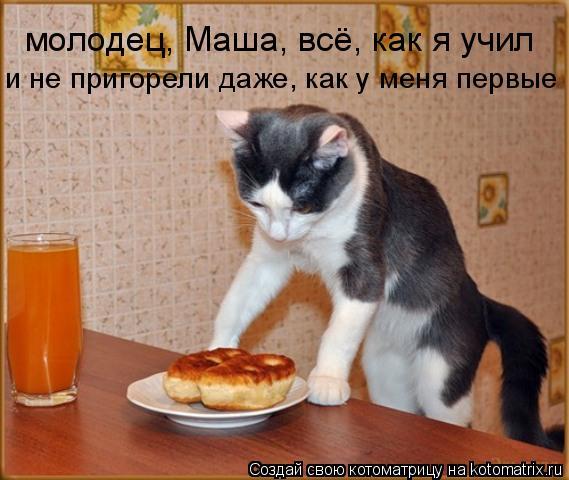 Котоматрица: молодец, Маша, всё, как я учил и не пригорели даже, как у меня первые
