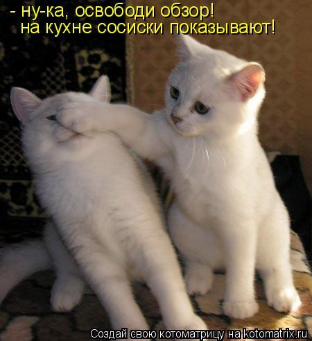 Котоматрица: - ну-ка, освободи обзор! на кухне сосиски показывают!