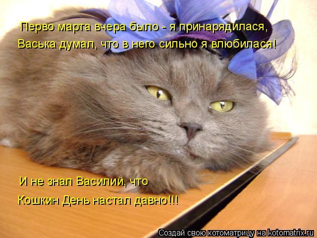 Котоматрица: Перво марта вчера было - я принарядилася, Васька думал, что в него сильно я влюбилася! И не знал Василий, что Кошкин День настал давно!!!