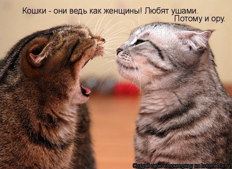 Котоматрица: Кошки - они ведь как женщины! Любят ушами. Потому и ору.