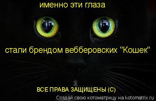 """Котоматрица: именно эти глаза стали брендом вебберовских """"Кошек"""" ВСЕ ПРАВА ЗАЩИЩЕНЫ (С)"""