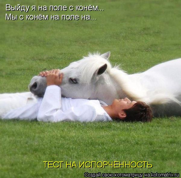 Котоматрица: Выйду я на поле с конём... Мы с конём на поле на... ТЕСТ НА ИСПОРЧЕННОСТЬ