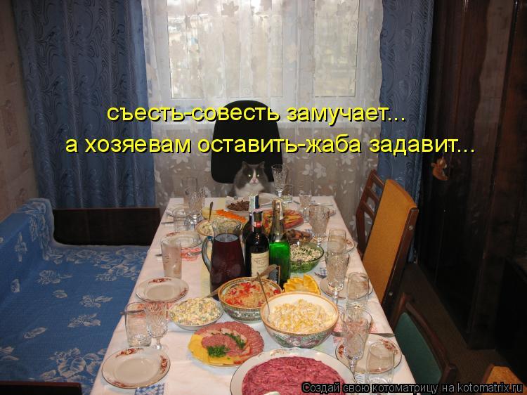 Котоматрица: съесть-совесть замучает... а хозяевам оставить-жаба задавит...