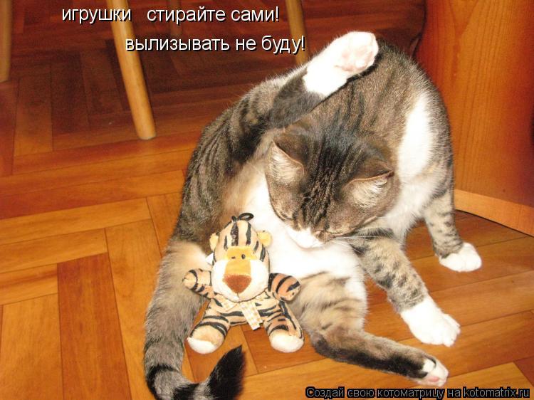 Кот вылизывает хвост ответ