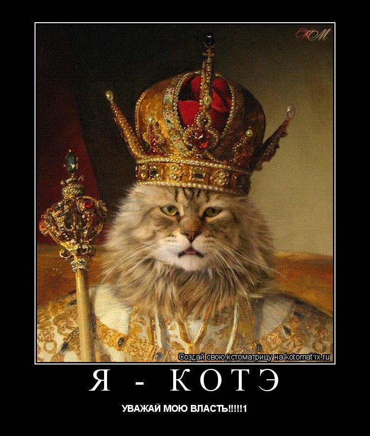 Котоматрица: я - котэ УВАЖАЙ МОЮ ВЛАСТЬ!!!!!1