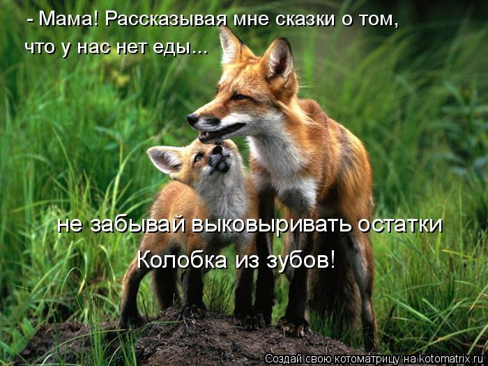 Котоматрица: - Мама! Рассказывая мне сказки о том, что у нас нет еды... не забывай выковыривать остатки Колобка из зубов!