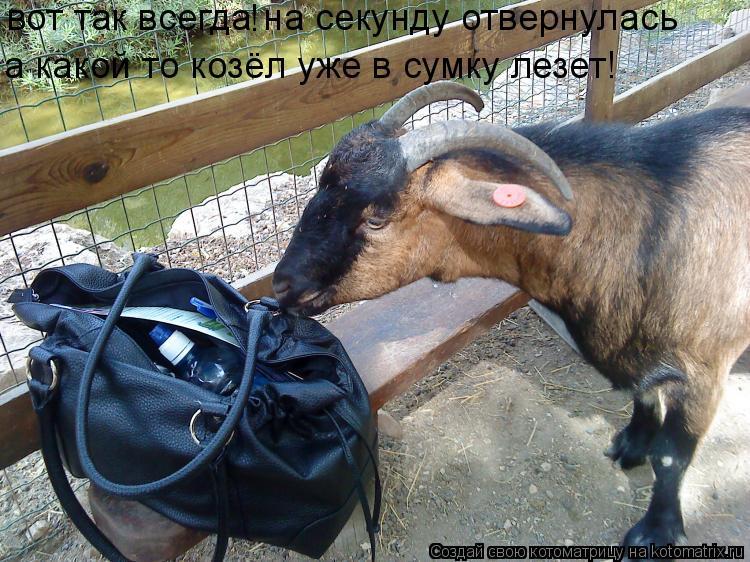 http://kotomatrix.ru/images/lolz/2010/03/04/504201.jpg