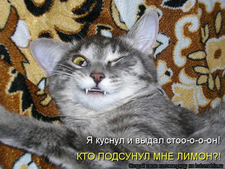 http://kotomatrix.ru/images/lolz/2010/03/04/504288.jpg