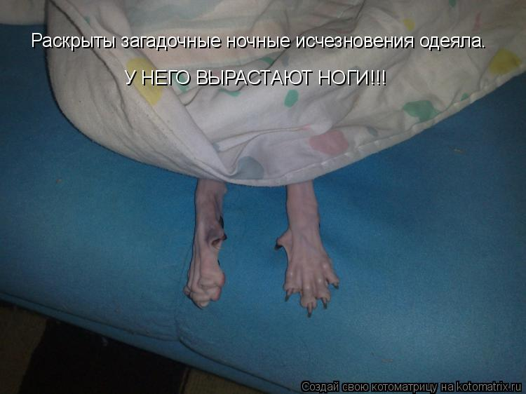 http://kotomatrix.ru/images/lolz/2010/03/04/504412.jpg