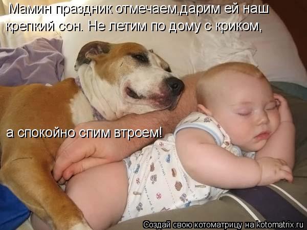 Котоматрица: Мамин праздник отмечаем,дарим ей наш крепкий сон. Не летим по дому с криком, а спокойно спим втроем!