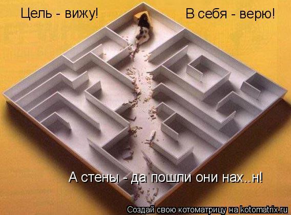 Котоматрица: Цель - вижу! В себя - верю! А стены - да пошли они нах..н!