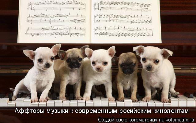 Котоматрица: Аффторы музыки к современным росийским кинолентам