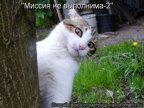 """Котоматрица: """"Миссия не выполнима-2"""""""