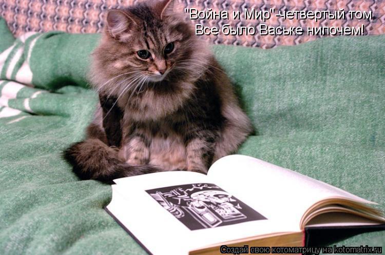 """Котоматрица: """"Война и Мир""""-четвертый том Все было Ваське нипочем!"""