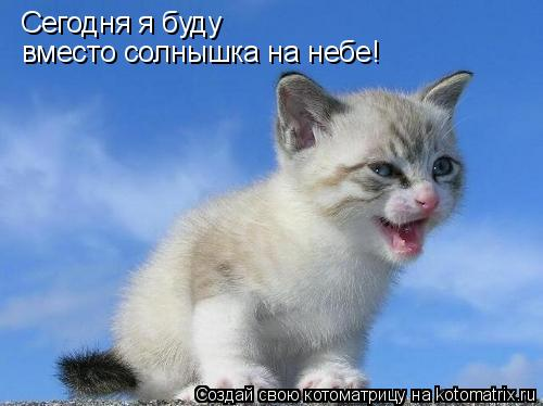 Котоматрица: Сегодня я буду  вместо солнышка на небе!
