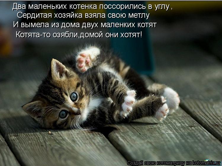Котоматрица: Два маленьких котенка поссорились в углу , Сердитая хозяйка взяла свою метлу И вымела из дома двух маленких котят Котята-то озябли,домой он