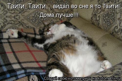 Котоматрица: Таити, Таити.... видал во сне я то Таити! Дома лучше!!!