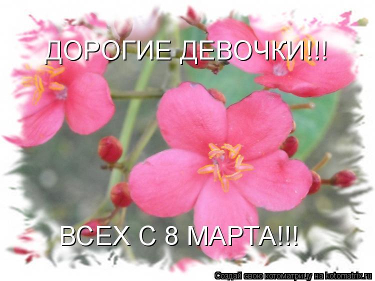 http://kotomatrix.ru/images/lolz/2010/03/07/zA.jpg