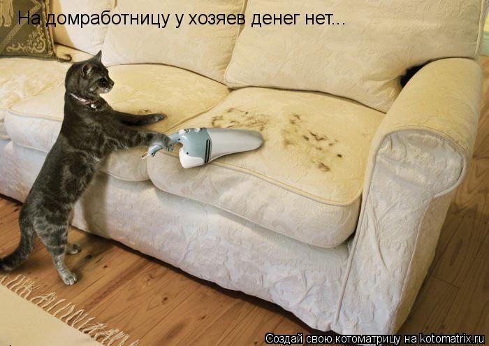 Котоматрица: На домработницу у хозяев денег нет...
