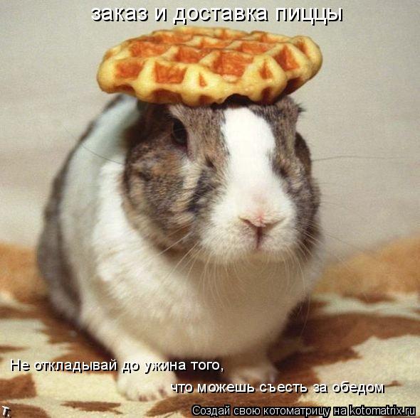 Котоматрица: Не откладывай до ужина того,  что можешь съесть за обедом  заказ и доставка пиццы