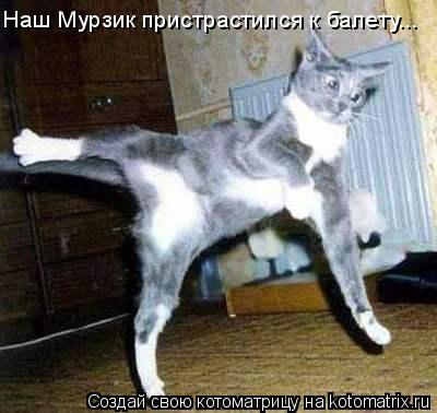 Котоматрица: Наш Мурзик пристрастился к балету...
