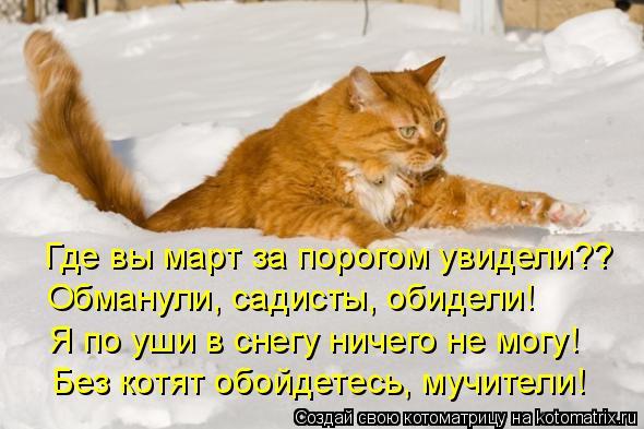Котоматрица: Где вы март за порогом увидели?? Обманули, садисты, обидели! Я по уши в снегу ничего не могу! Без котят обойдетесь, мучители!