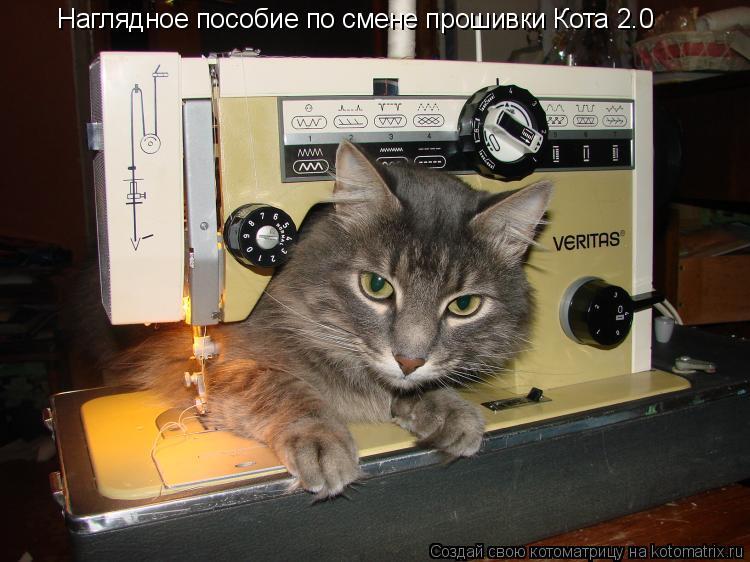 Котоматрица: Наглядное пособие по смене прошивки Кота 2.0