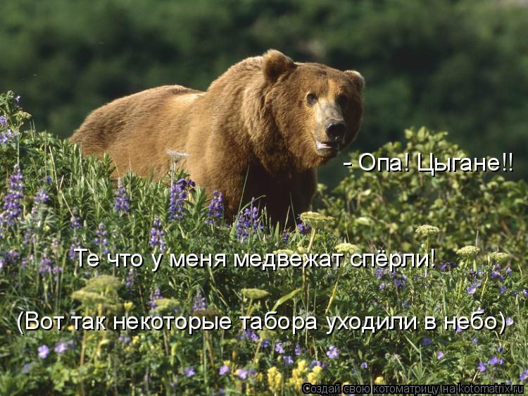 Котоматрица: - Опа! Цыгане!! Те что у меня медвежат спёрли! (Вот так некоторые табора уходили в небо)