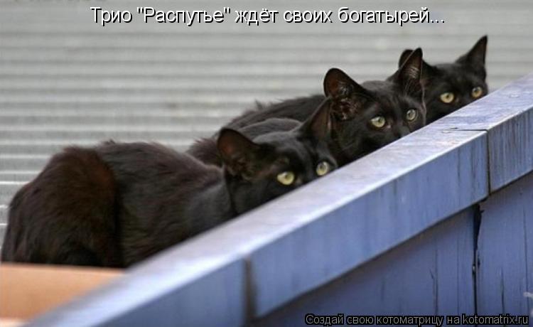 """Котоматрица: Трио """"Распутье"""" ждёт своих богатырей..."""