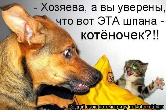 http://kotomatrix.ru/images/lolz/2010/03/10/472375.jpg