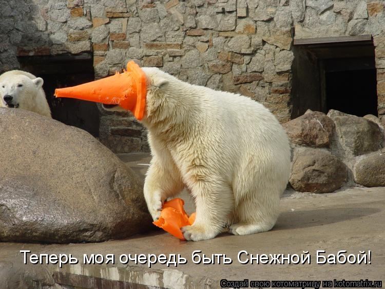 Котоматрица: Теперь моя очередь быть Снежной Бабой!