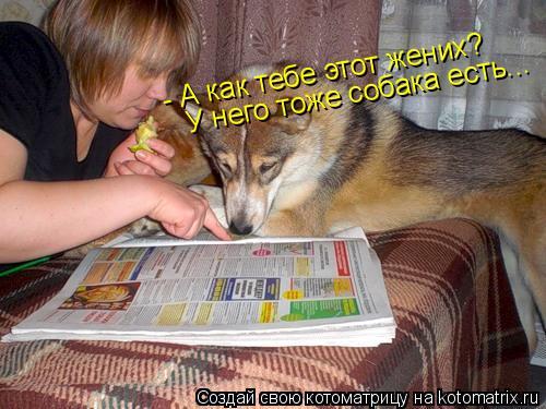 Котоматрица: - А как тебе этот жених? У него тоже собака есть...