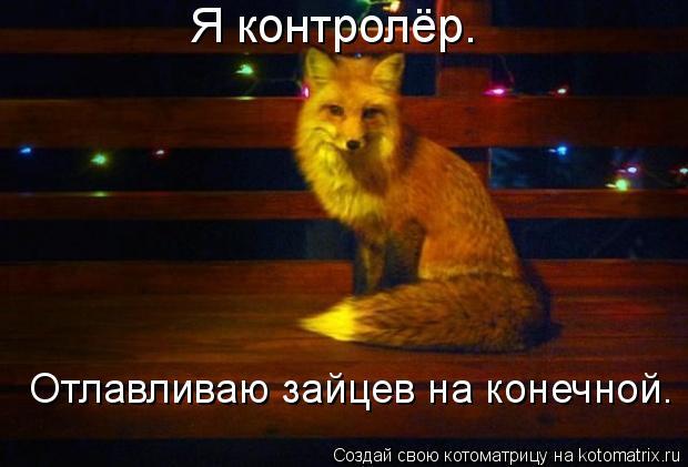 Котоматрица: Я контролёр. Отлавливаю зайцев на конечной.