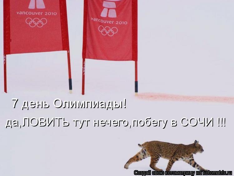 Котоматрица: 7 день Олимпиады! да,ЛОВИТЬ тут нечего,побегу в СОЧИ !!!