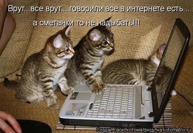 Котоматрица: Врут...все врут....говорили все в интернете есть... а сметанки то не надыбать!!!