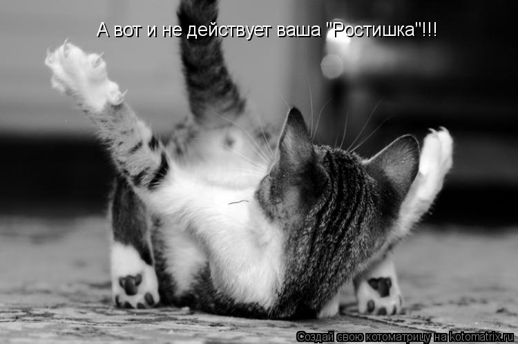 "Котоматрица: А вот и не действует ваша ""Ростишка""!!!"