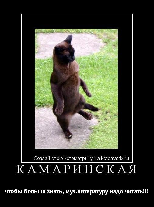 Котоматрица: Камаринская чтобы больше знать, муз.литературу надо читать!!!