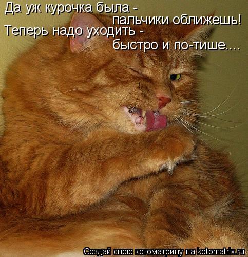 http://kotomatrix.ru/images/lolz/2010/03/12/512546.jpg