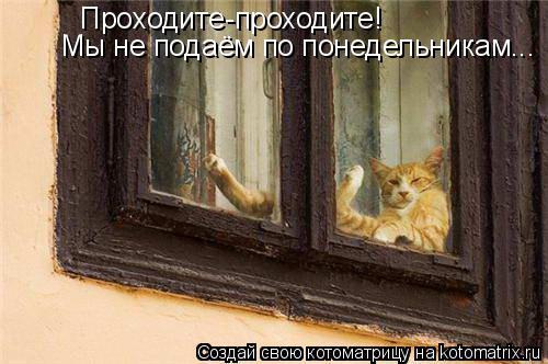 Котоматрица: Проходите-проходите! Мы не подаём по понедельникам...