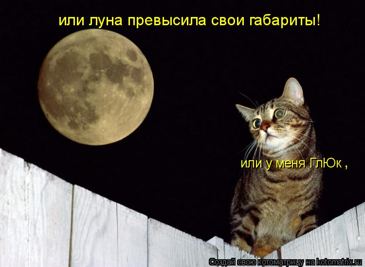 Котоматрица: или у меня ГлЮк или луна превысила свои габариты! ,
