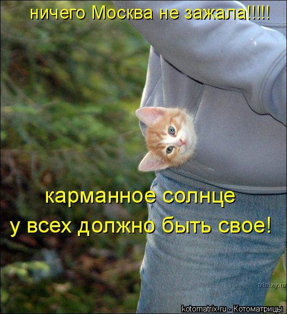 Котоматрица: ничего Москва не зажала!!!!! карманное солнце  у всех должно быть свое!