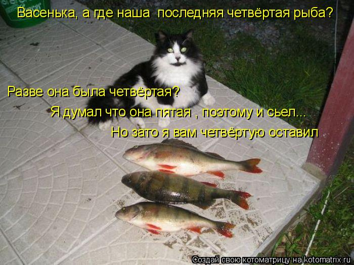 Котоматрица: Васенька, а где наша  последняя четвёртая рыба? Разве она была четвёртая? Я думал что она пятая , поэтому и сьел... Но зато я вам четвёртую оста