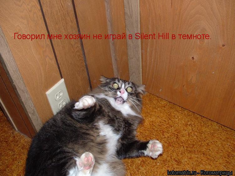 Котоматрица: Говорил мне хозяин не играй в Silent Hill в темноте.