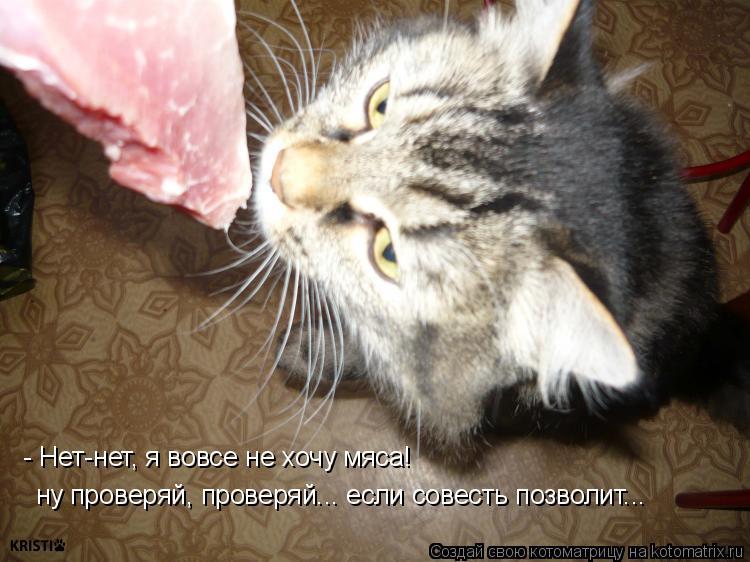 Котоматрица: - Нет-нет, я вовсе не хочу мяса! ну проверяй, проверяй... если совесть позволит...